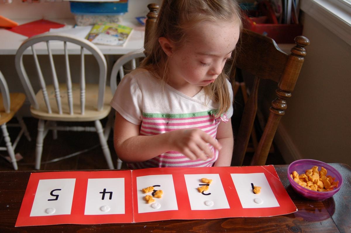 ensenar matematica nino discapacidad intelectual: